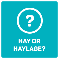 Hay or Haylage?