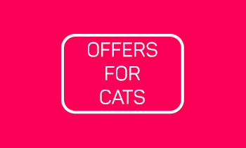 Special Offers For Cats