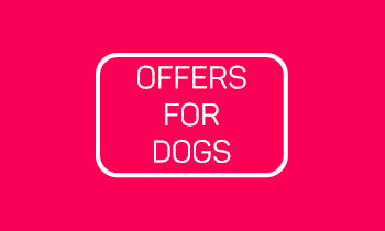 Special Offers For Dogs